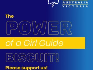 girl guide biscuits
